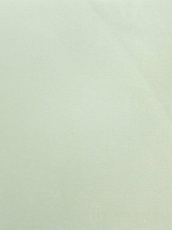 Jersey-Stoff Pastell Lindgrün